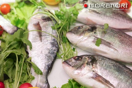 Полезные свойства рыбы и морепродуктов