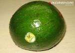 авокадо для салата с креветками
