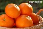 Mikan мандарин