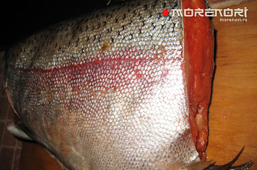 рыба кижуч как приготовить