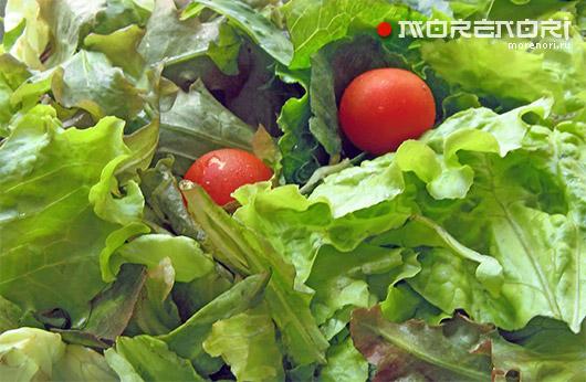 Как сохранить свежими и аппетитными зелень и салат