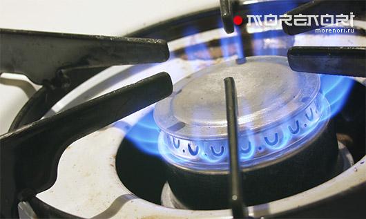 Критерии выбора газовой плиты