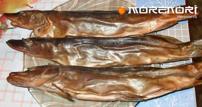 рецепт копчёной рыбы