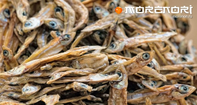 Как выбрать вяленую рыбу