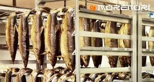 как коптить рыбу в коптильне